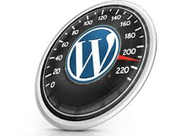 web hosting page speed